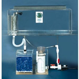Buy aquarium tank